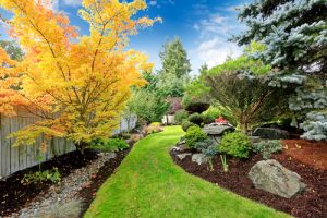 Why you should hire a professional landscape design contractor